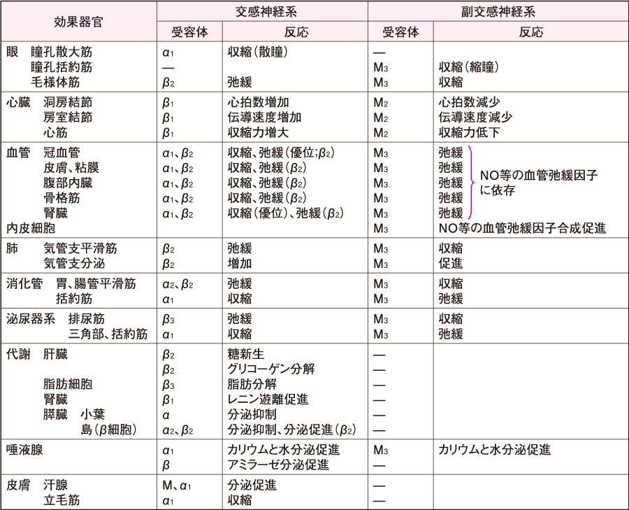 αとβの分類